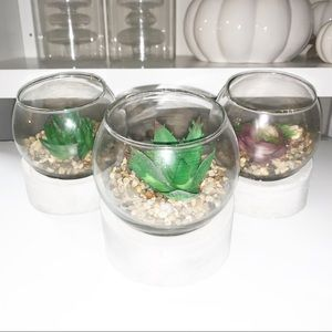 set of 3 cement & glass faux succulents NWT.